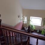 treppe-hinterhaus